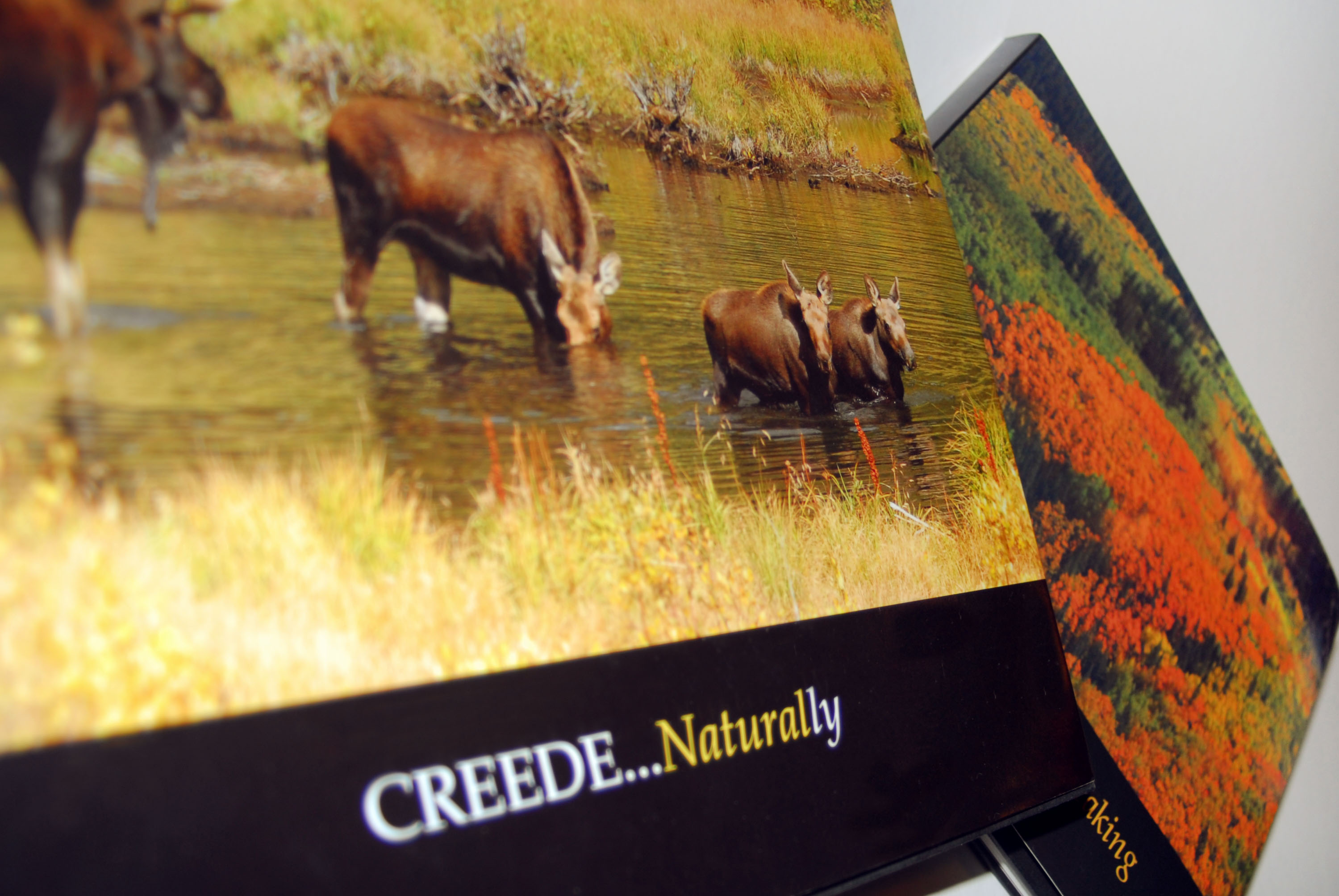 Creede Naturally Photography Book Design